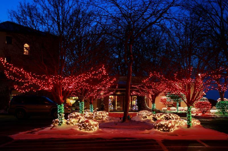 CIC Winter Night Lights.jpg