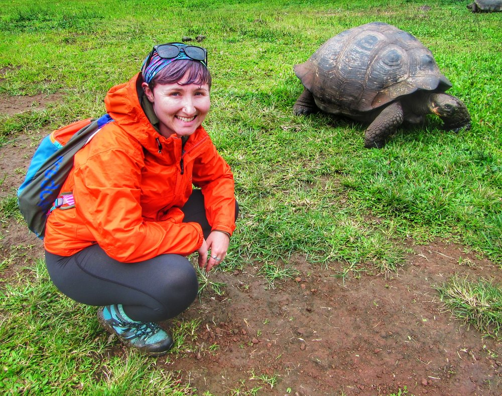 Hanging out with tortoises in the Galapagos Islands - September, 2017
