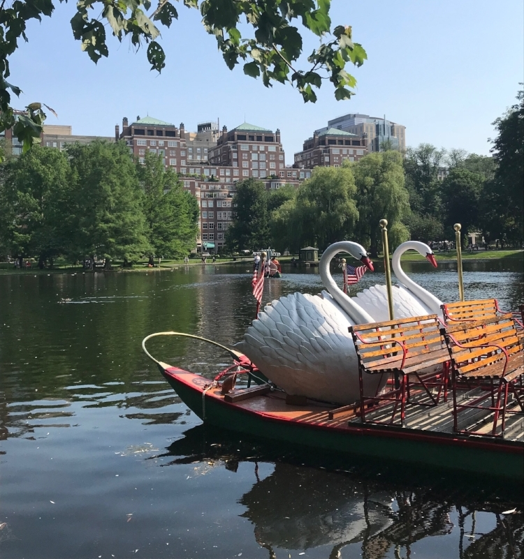 Boston 3 day itinerary swan boats