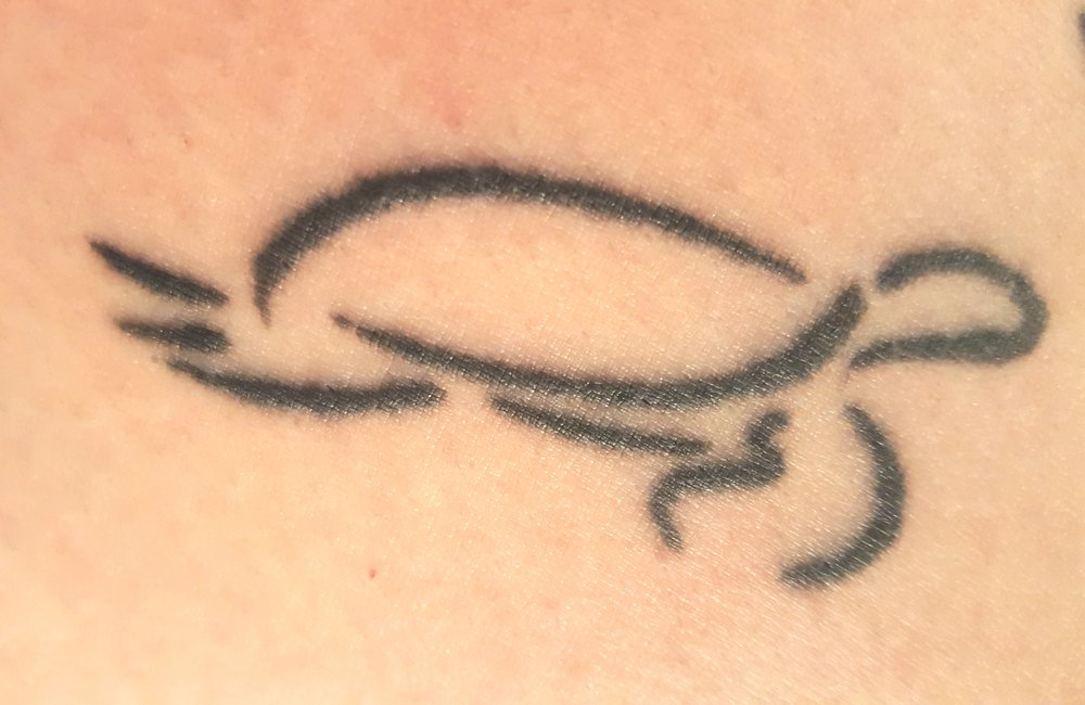 travel tattoo turtle