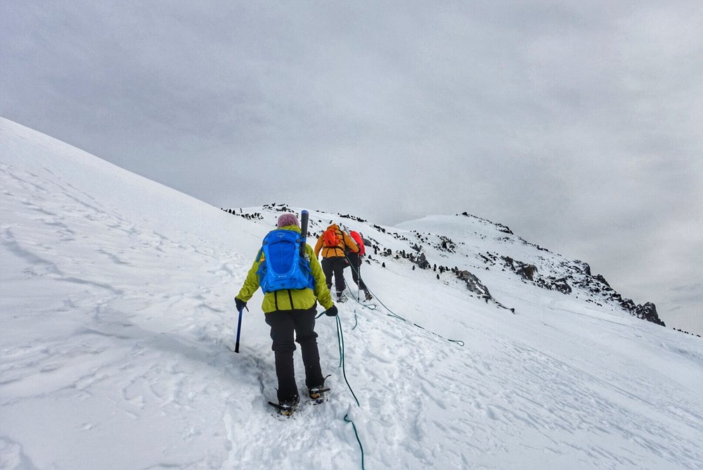Things to know before going to Antarctica - Mountaineering
