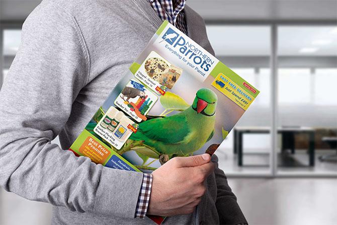 parrots_main.jpg