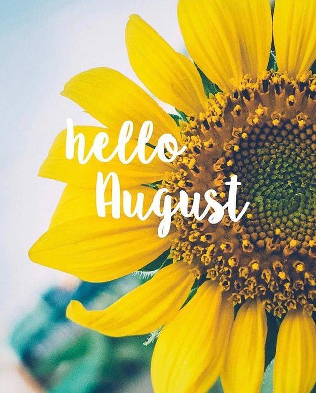 Hello Indeed. 🌻 #august #sunflower #cartye