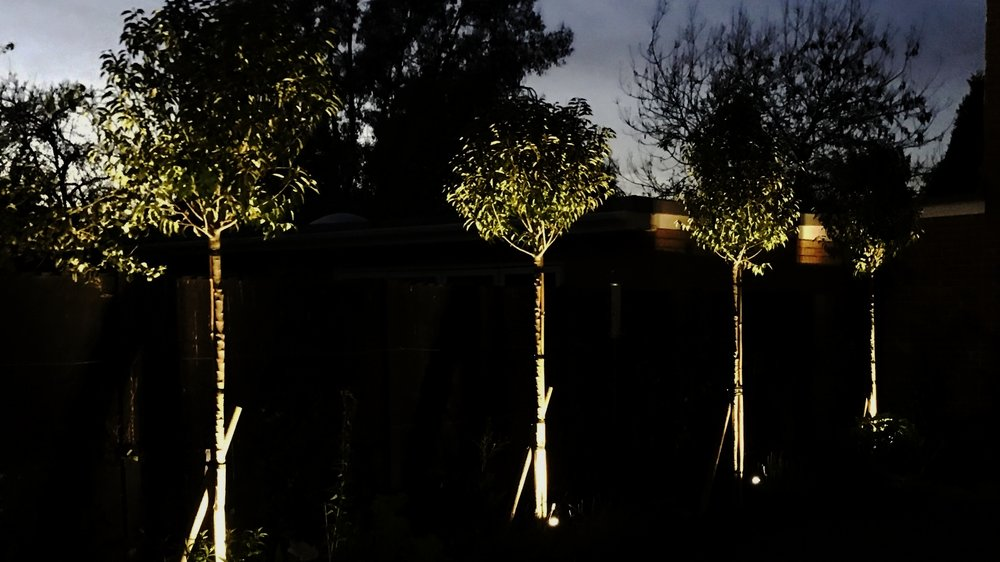 - Garden Lighting