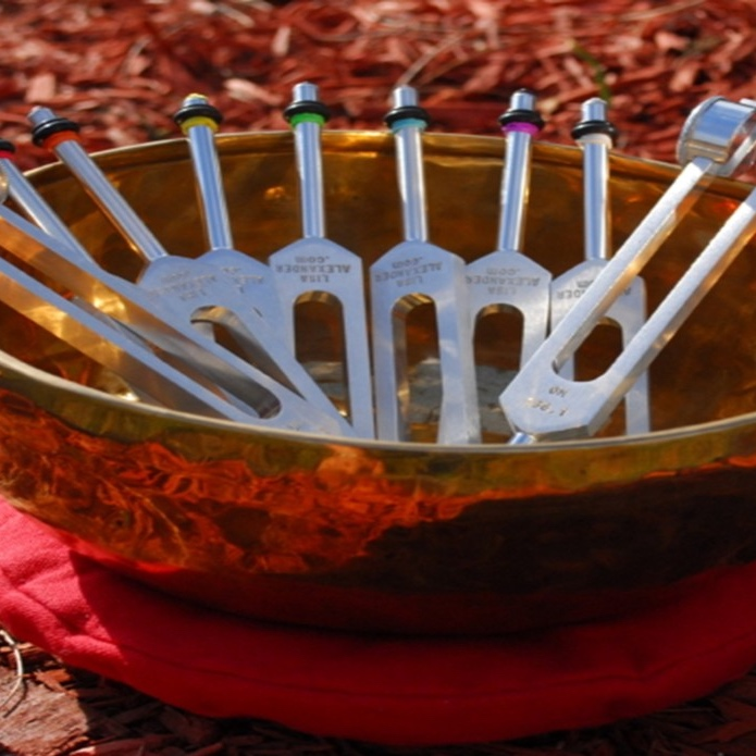 Vibrational Sound Therapy - Learn and experience the benefits of Vibrational Sound Therapy! During this 1.5-2.5 hour workshop, Karen, Certified Sound Therapist, will introduce and explain to you this proven modality, then provide a 10-minute individual mini-session. Sound therapy uses the frequencies of medical-grade tuning forks, Tibetan bowls and other sound healing tools to detect and correct imbalances in the body's energy systems; reducing stress, creating a sense of peace, well-being and better health. * Not appropriate for those with pacemakers, osteoporosis or pregnancy. Ages: AdultAbout the Instructor: Karen Kline is a Certified Sound Therapist through the Wind Willow Sound School in Portage, MichiganWorkshop fee: $15 per person, minimum 3, maximum 8