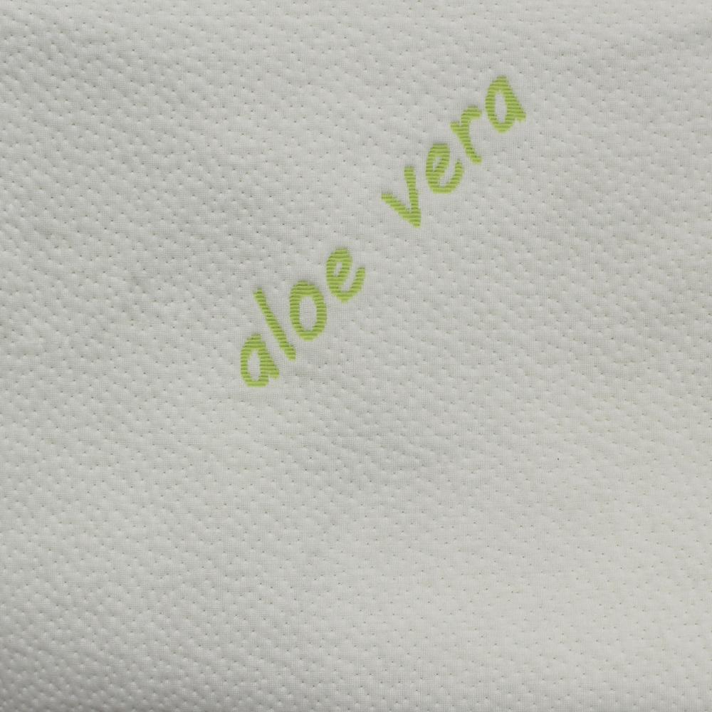 Aloe Vera -