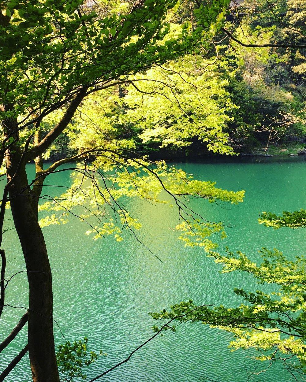 Hiking the Otama Trail in Japan — City Sketch