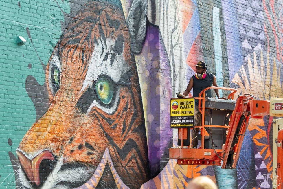Bright Walls Mural Festival Last Day • Photo Gallery - JTV • Oct. 9, 2018