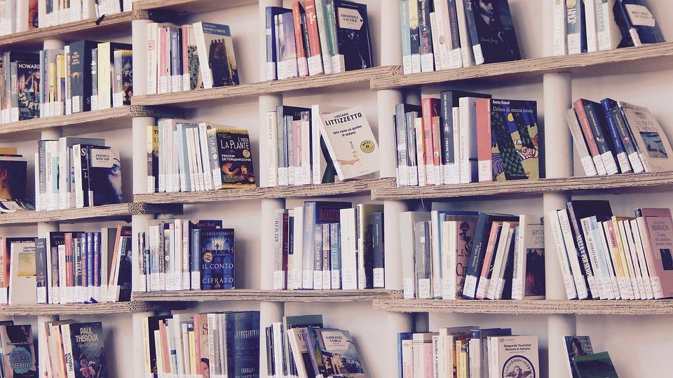 books-1617327_960_720.jpg