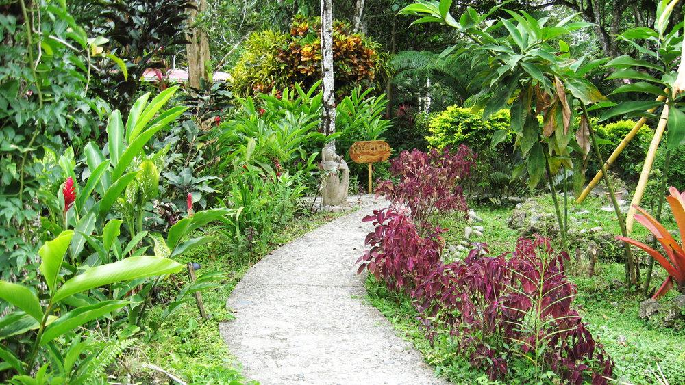 Garden walkwayb.jpg