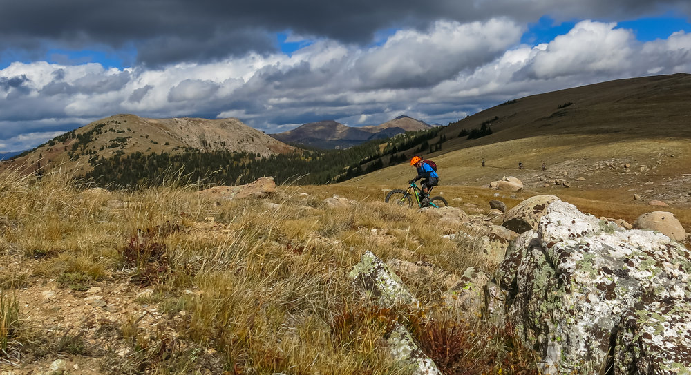 Riders on the Monarch Crest Trail, which draws bike tourists to Salida's Absolute Bikes. (  Flickr/Danny Laroche )
