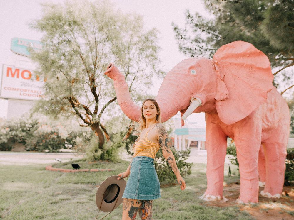 desert-dwelling-pink-elephant-motel-2.jpg
