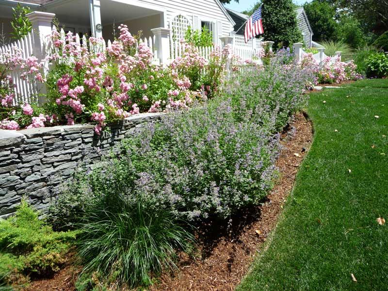 Cottage-Garden-_1.jpg