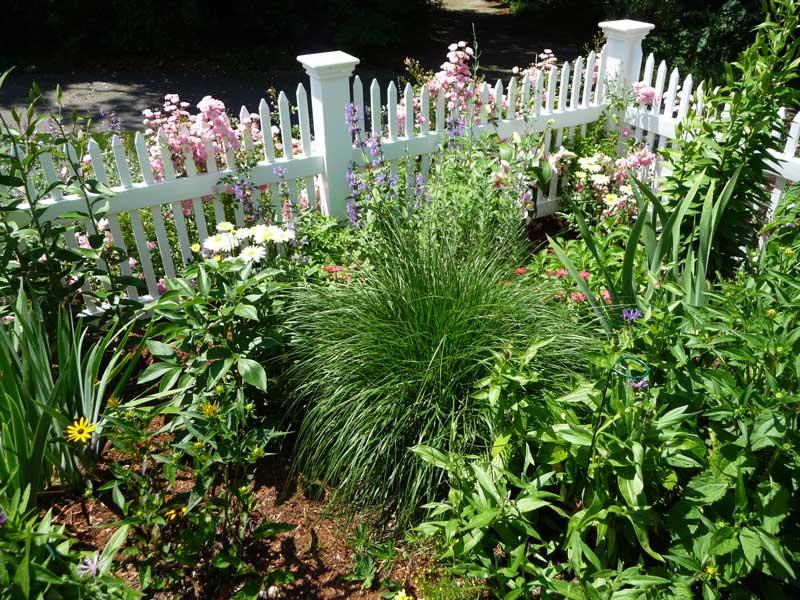 Cottage-Garden-_3.jpg