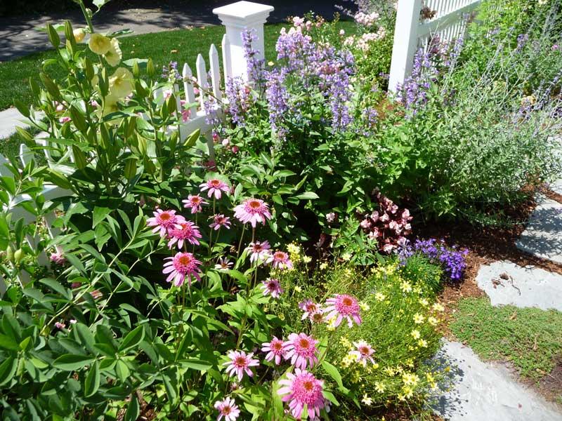 Cottage-Garden-_5.jpg