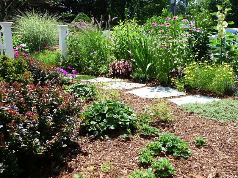 Cottage-Garden-_6.jpg