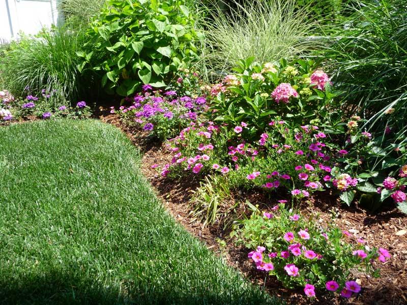 Cottage-Garden-_10.jpg