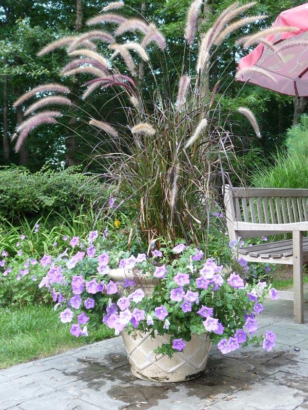 Planters-Floral-Arrangements-Cape-Cod3.jpg