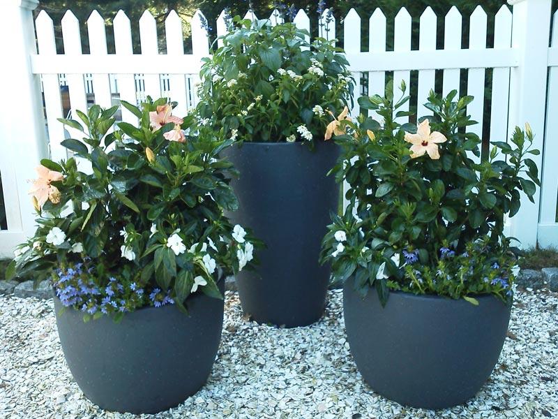 Planters-Floral-Arrangements-Cape-Cod8.jpg
