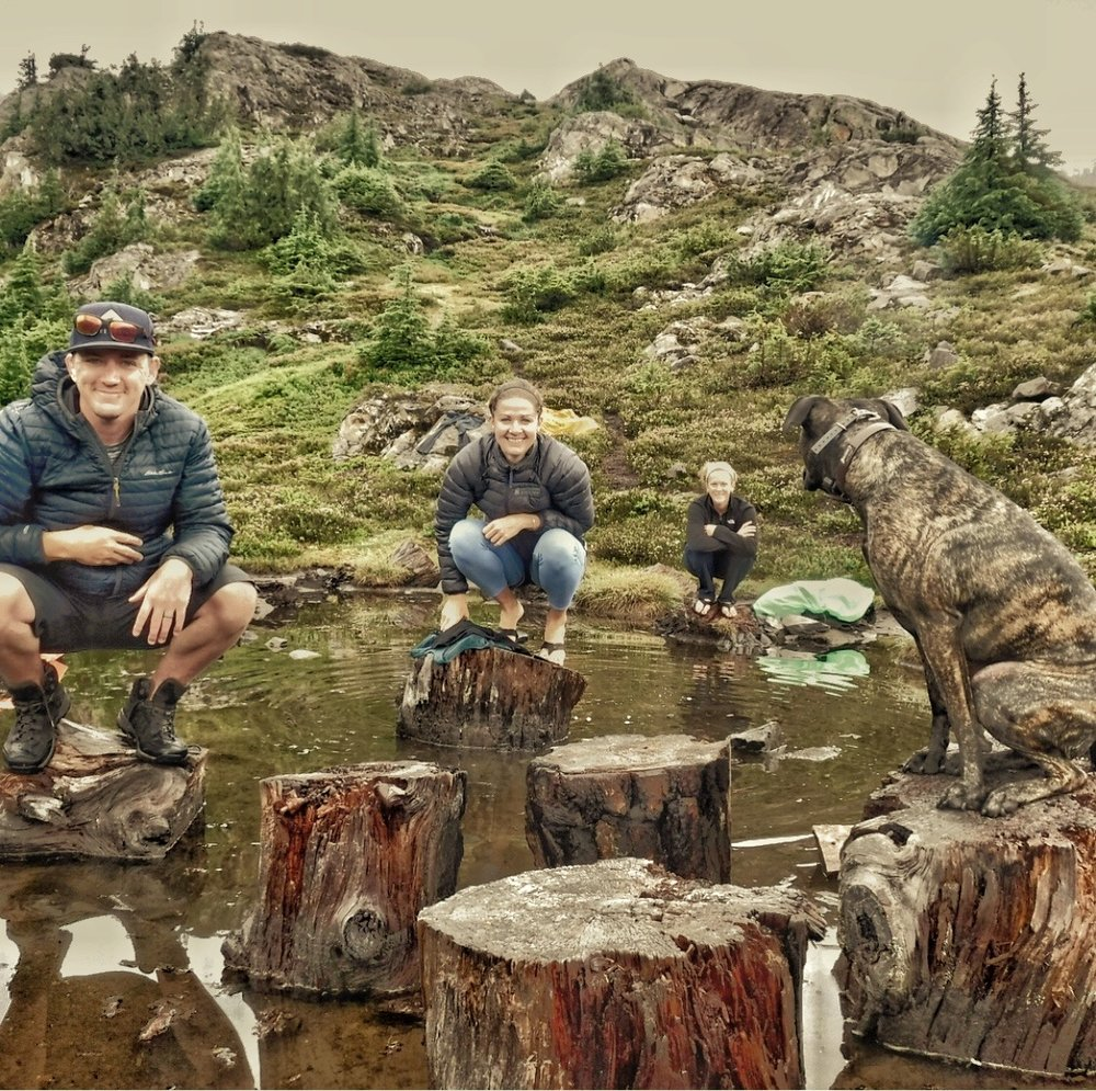 Stumped in Gothic Basin - Caitlin lead Saxon, Heidi, and Ryan on a hike for the books. #itllbeworthitright #wta #wtf#istilllovewhereilive
