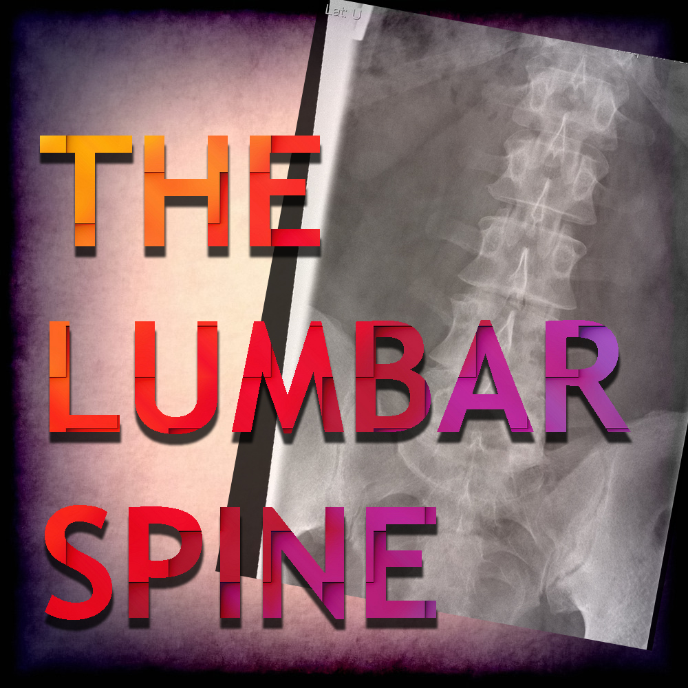 The Lumbar Spine.jpg