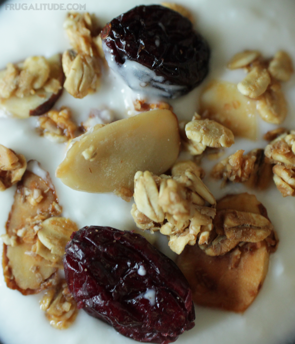 Homemade granola with homemade yogurt