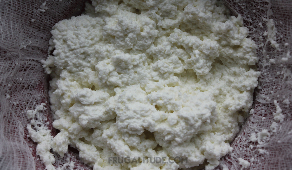 Delicious ricotta cheese