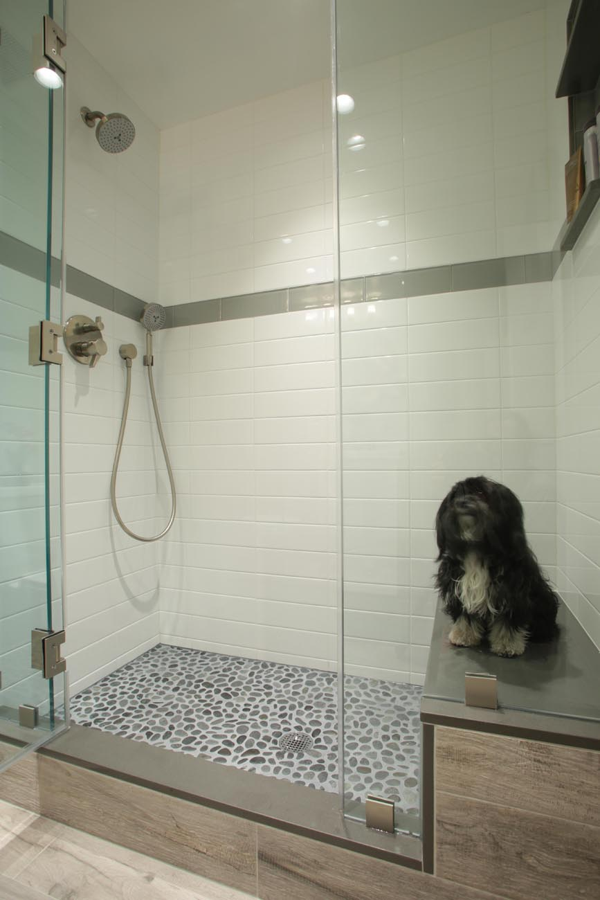 1_shower_with_dog_LO.jpg