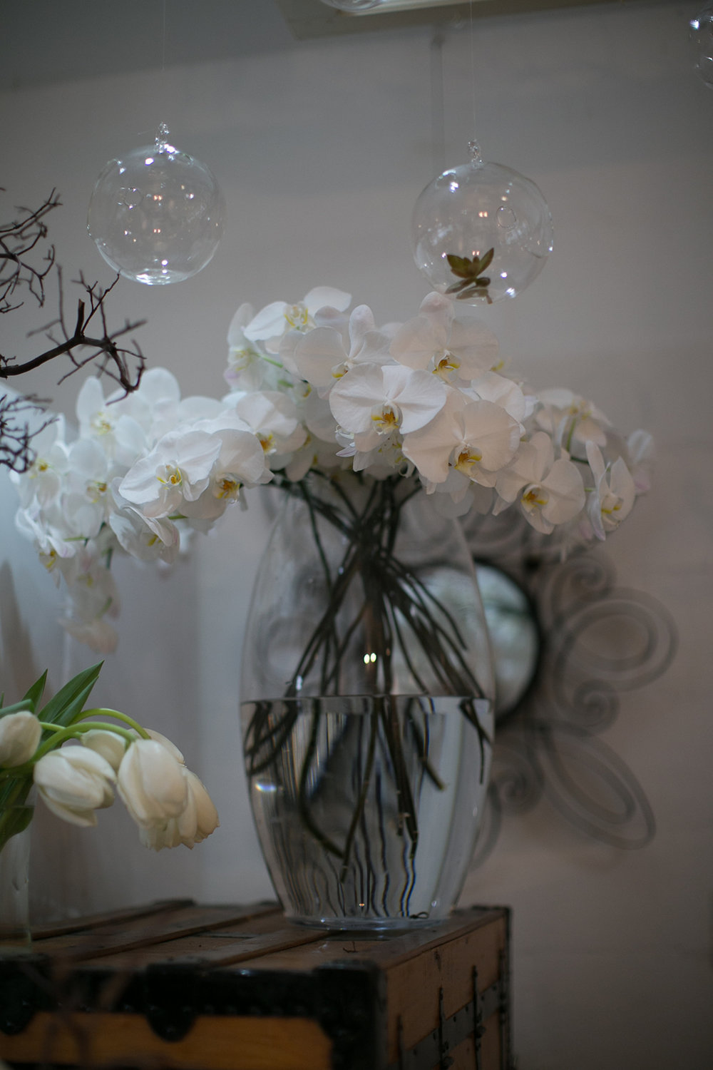 sarah bray photographyKelly Shannon Floral_14.jpg