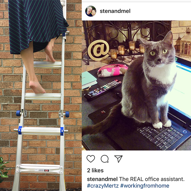 my nerdtastic*bff (er, cousin-in-law) once again came to the rescue and let me take some reference photos of her climbing a ladder (braver than vertigo-me!) to get the movement right for my final sketch. i also used her beautiful kitty mertz to style our own curious kitty.