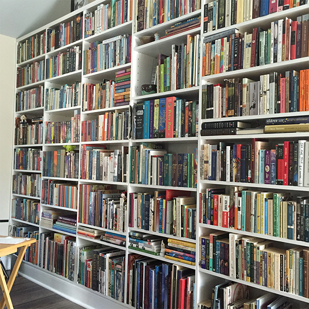 hermione isn't the only bookworm we know.  here's a peek at the wall of books that watches me when i paint.