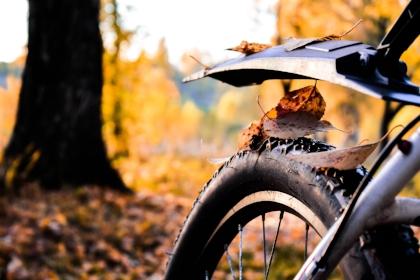bike-dry-leaves-fall-1463112.jpg