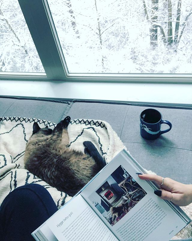 The definition of hygge 💙 . 📖 North: How to Live Scandinavian by Bronte Aurell @bronteathome . . . #hyggehome #hyggeligt #walle #scandinavian #sleepycat #cozymorning #snowday #babyitscoldoutside #hygge