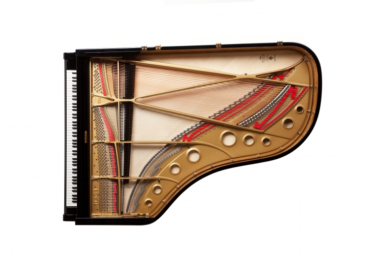 'The Very Best' - In less than 40 years of production these phenomenal grands have become considered by many to be the world's finest pianos. Acclaimed by the great concert artists of our time, these remarkable pianos are handcrafted in Sacile, Italy with a yearly production of less than 150 instruments.