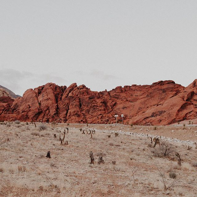 Living in the desert physically has forced me to take my mind on, allowed me to slow down and work on myself. Working to train my mind and heart to be an desert - silent and calm . Even in the busiest of times we need to allow rest and silence so intuition and thoughts can flow through. You don't have to be in the desert to do this find your own desert find your own calm, even in the busiest of times the busiest of cities or wherever you are, find your desert - the calm in your mind to reflect