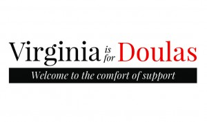 Winchester Leesburg Doula