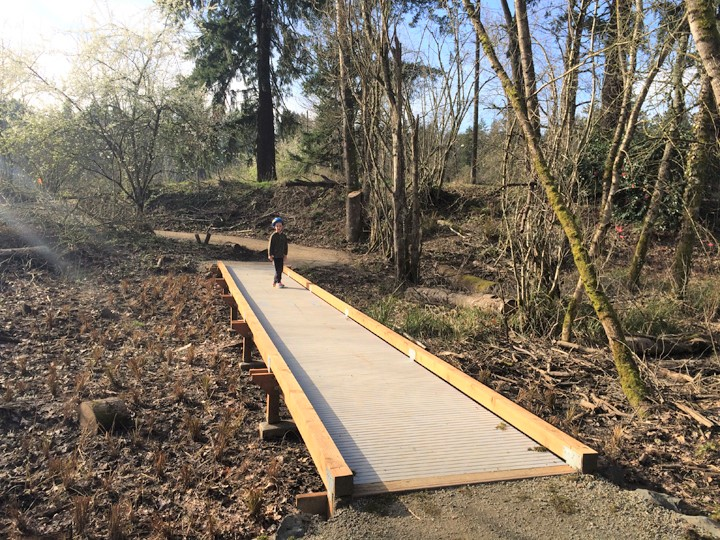 Spring_Park_Boardwalk_reduced.jpg