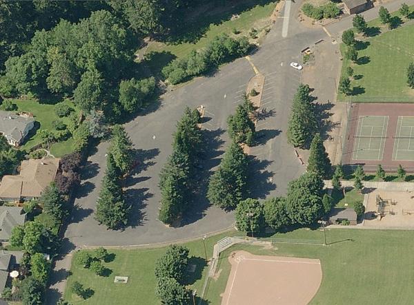 Bird's Eye View of Memorial Park