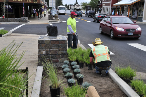 Crews lay out shrubs in the streets' expanded planters.