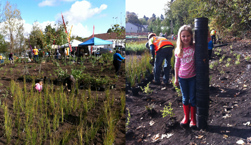 PMLR-Park-P&R-volunteer-planting