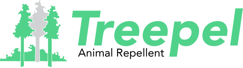 logo brighter.png