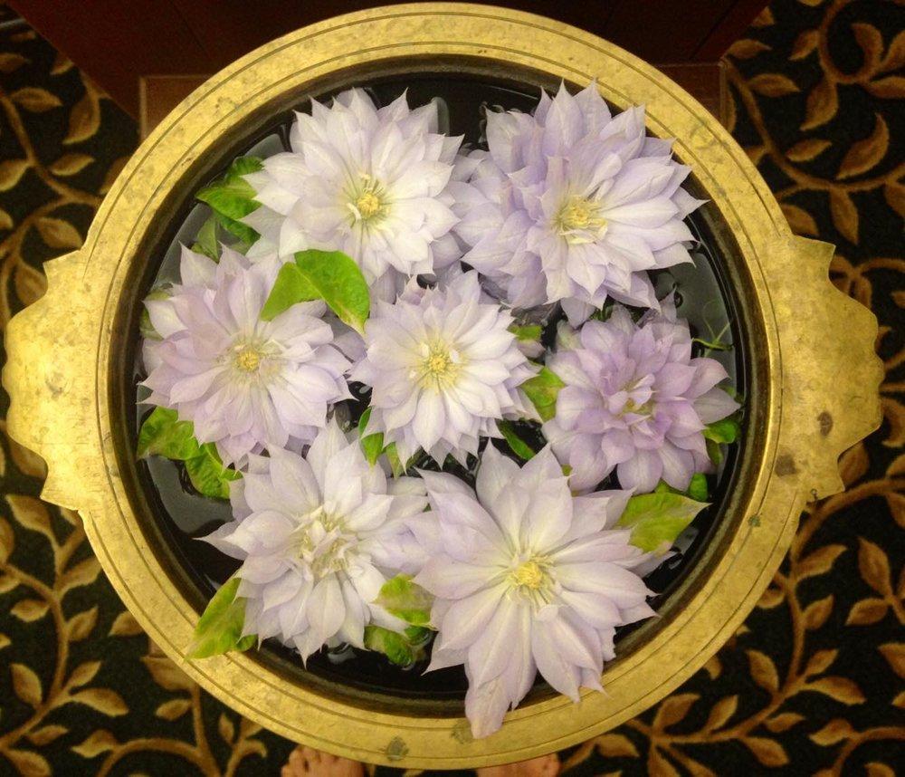 Sruti flowers.jpg