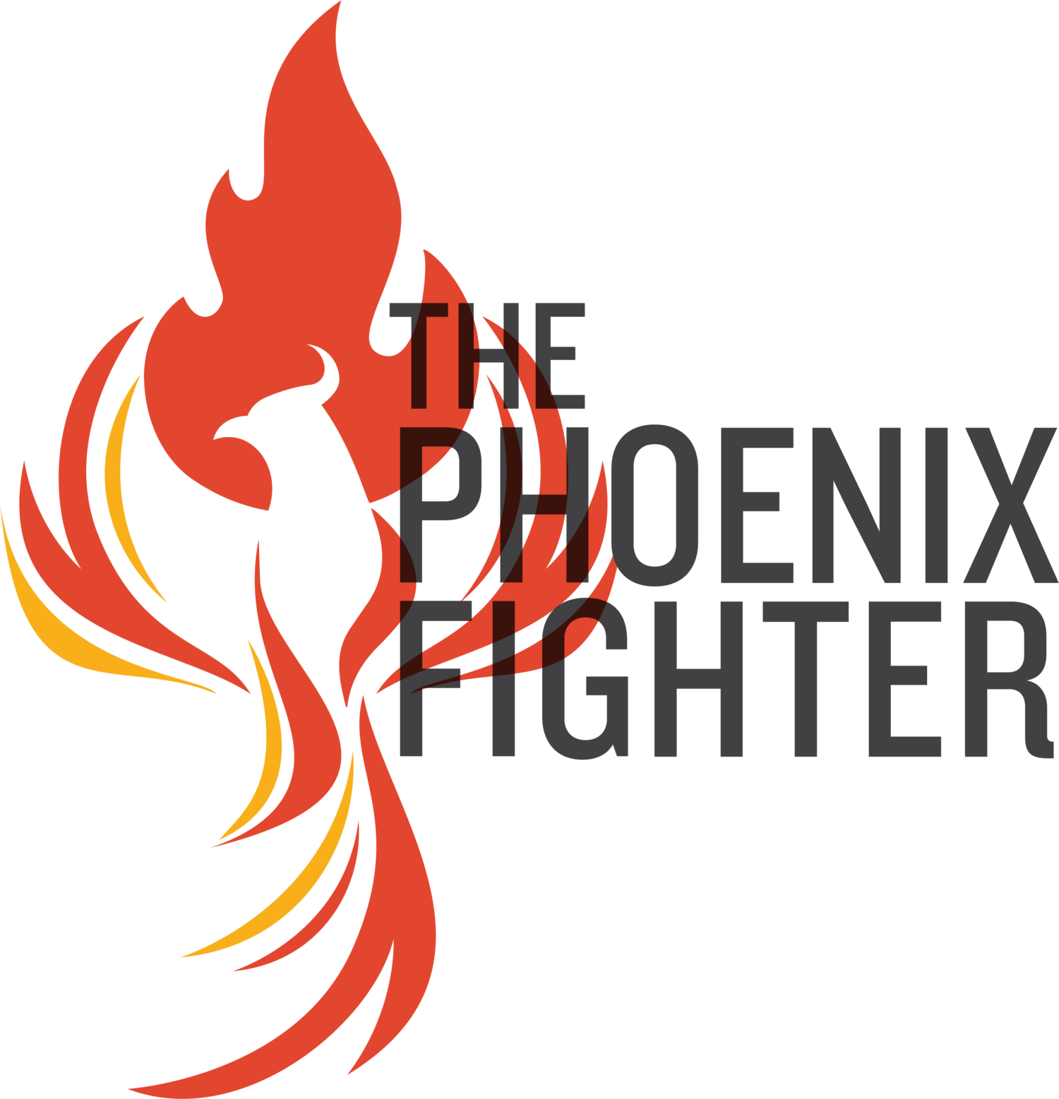 The Phoenix Fighter