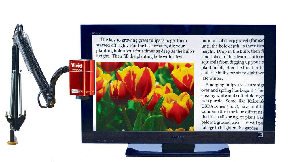 HD900 with Sony 32'' screen; IMG_1597; RGB.jpg
