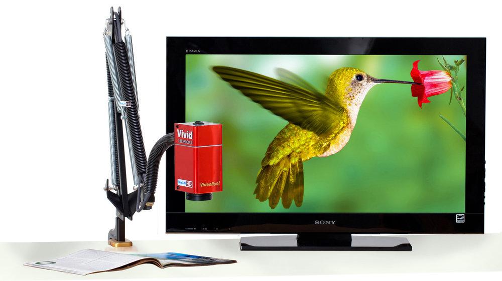 HD900 arm - Hummingbird photo.jpg