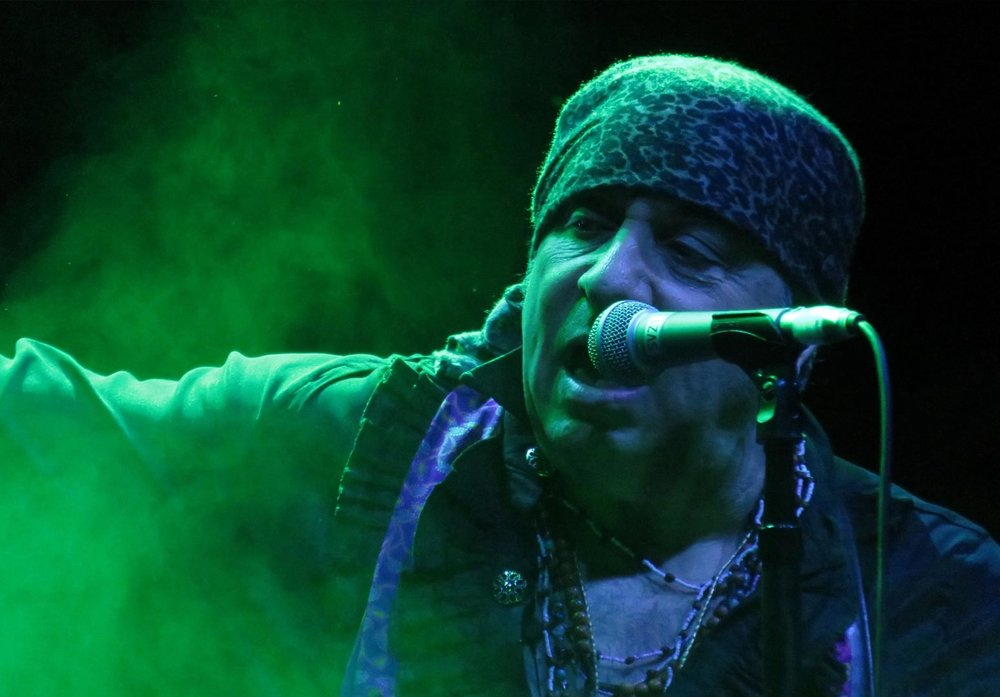 Steven Van Zandt - Steven Van Zandt has done it all.  Legendary guitarist / band member of Bruce Springsteen's E Street Band,