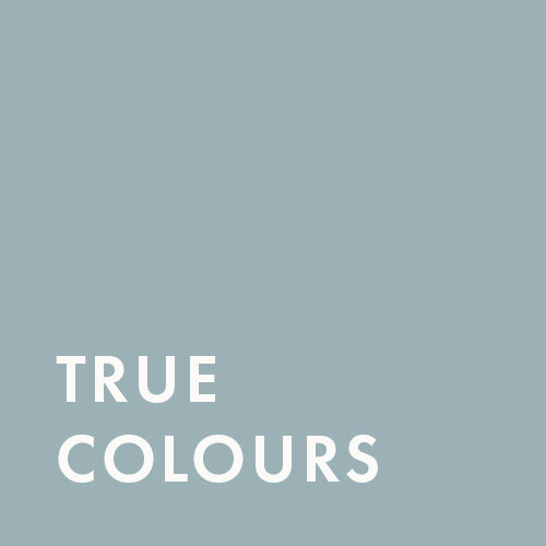 True Colours Consulting
