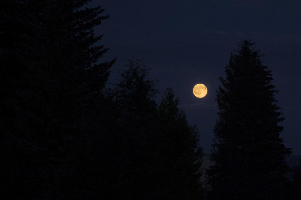 moon-composite2-1024x683.jpg