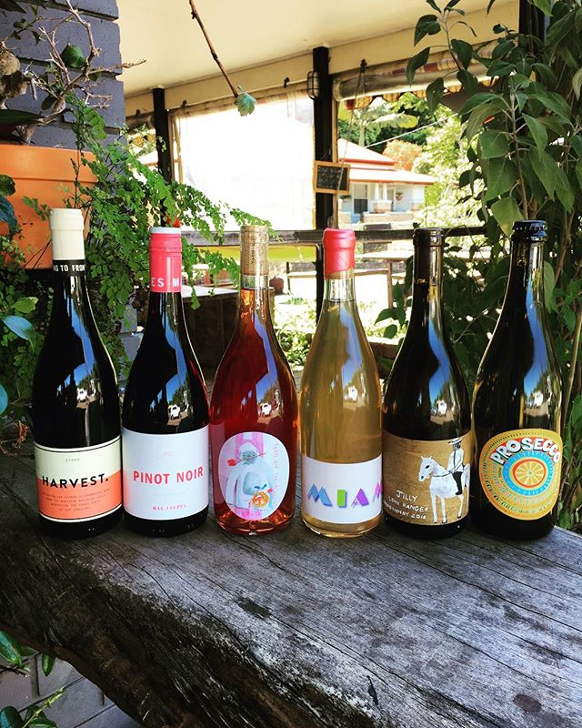 FESTIVE MIXED HALF DOZEN  The party season has arrived!  We've chosen six of our favourite natural wines for the festive season & given you 10% off. Packs are $148 & numbers are limited. Order yours from the Cellar today! 🎄 Puncheon Darts Prosecco + Jilly Lone Ranger 2018 Chardonnay + Jilly Miami White + Mac Forbes Pinot Noir + Harvest Syrah + Yetti & the Kokonut B'Rose 🎄