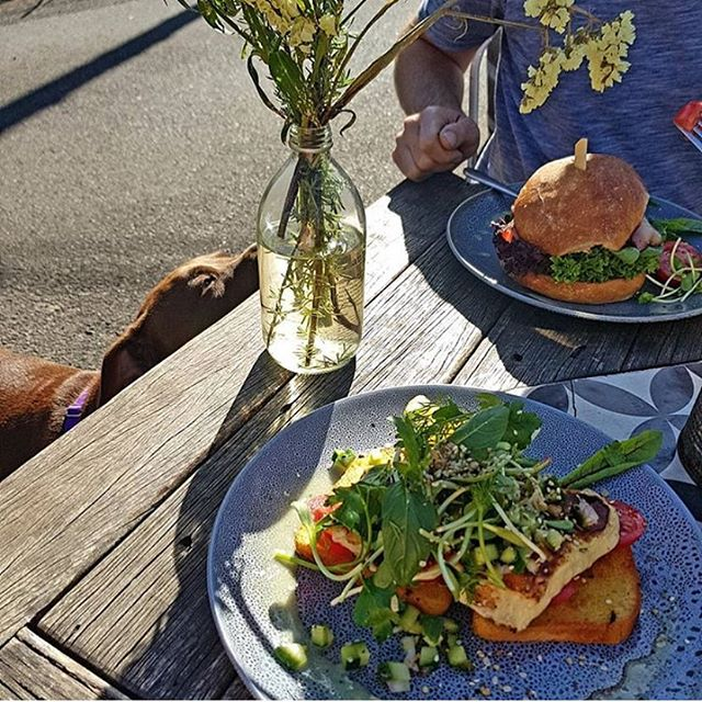 It's a great day for a spot of lunch in our kitchen garden (even puppers think so too!) 🐶🌿🍃🌞 via @becki_robinsonj